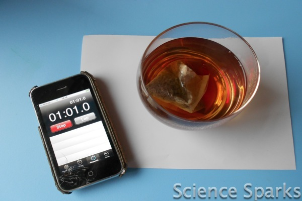 Investigating Teabags Science Sparks Diffusion