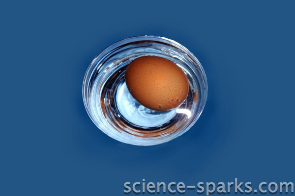 How to get an egg yolk without cracking the shell - Science Sparks
