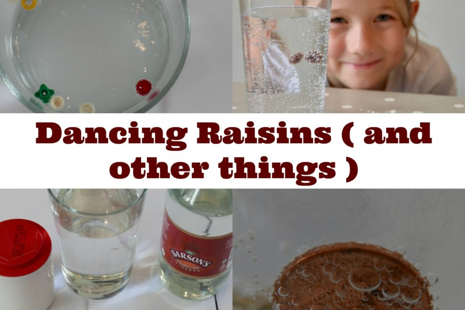 Raising Raisins – baking soda investigation