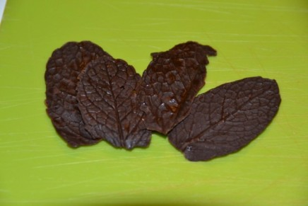 Mint chocolate leaves – changes of state