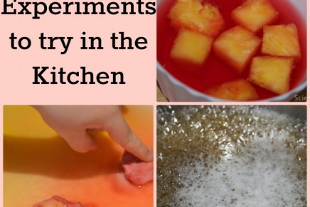 50 Kitchen Science Experiments