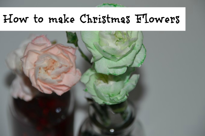 How to make Christmas Flowers