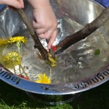 20 Fun Outdoor Science Experiments