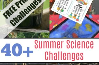 Science Challenge Printables - easy summer science challenges for kids