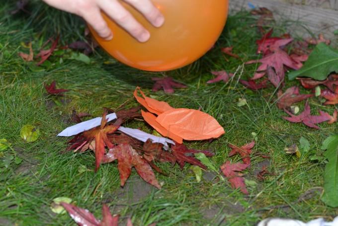 Autumn science