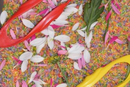 Easy Flower Sensory Tray