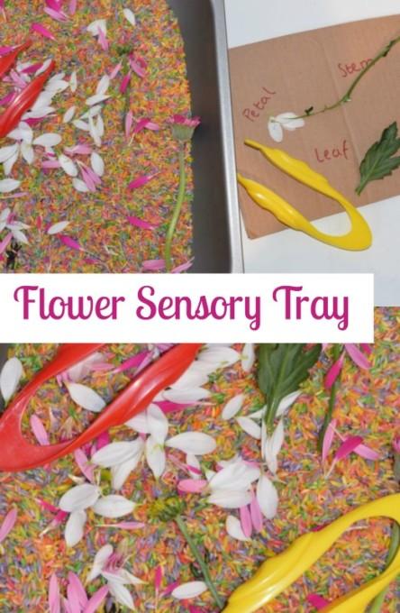 Flower-Sensory-Tray