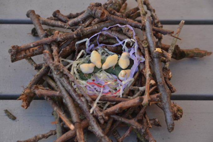 build a bird nest