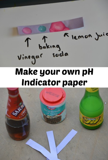 Make your own pH Indicator Paper