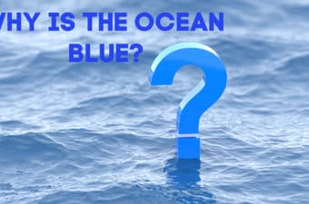 Why is the ocean blue - fun facts for kids