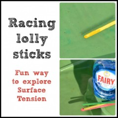 Racing Lolly Sticks – Surface Tension Experiment