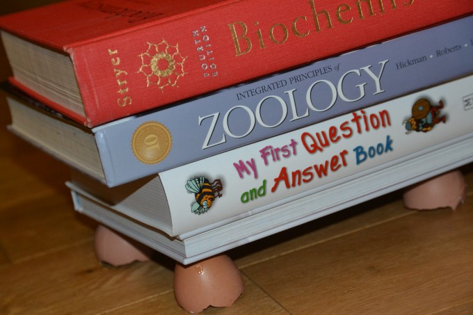 Books on an egg