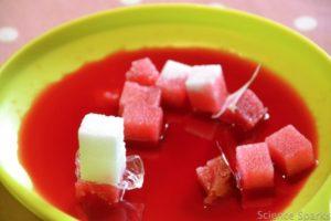 sugar cube science