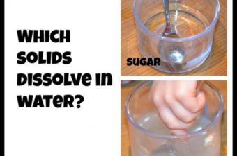 Which solids dissolve in water?