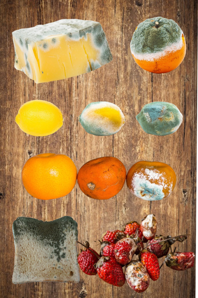 Rotting mouldy foods on a chopping board