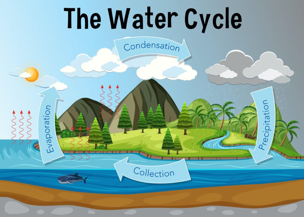 Water Cycle Diagram - evaporation and the water cycle #watercycle