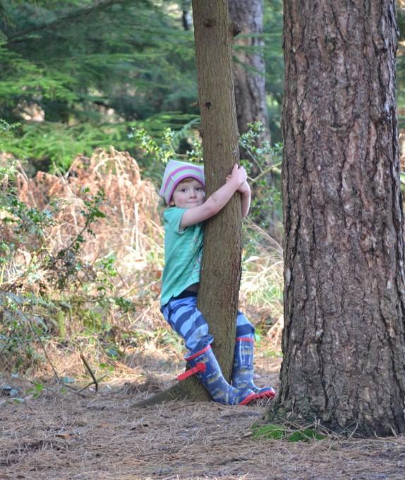 Child hugging a tree