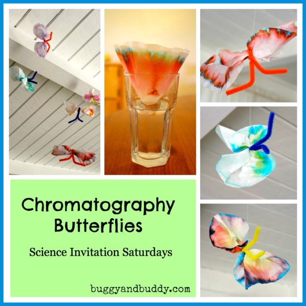 Chromatography Butterflies - creative science for kids