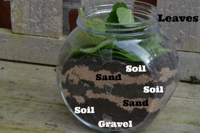 Homemade wormery - science for kids. Easy wormery in a jar