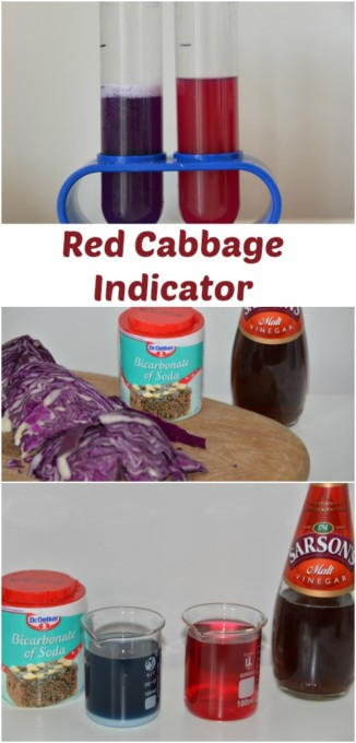 How to make a red cabbage indicator