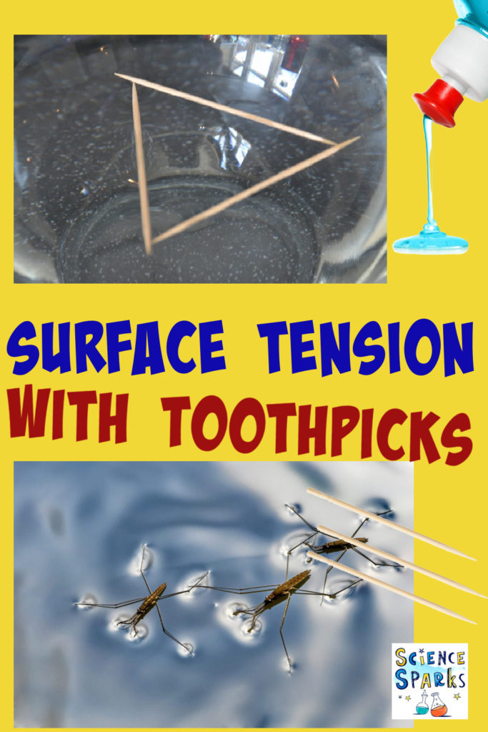 toothpicks on the surface of water for a surface tension experiment.