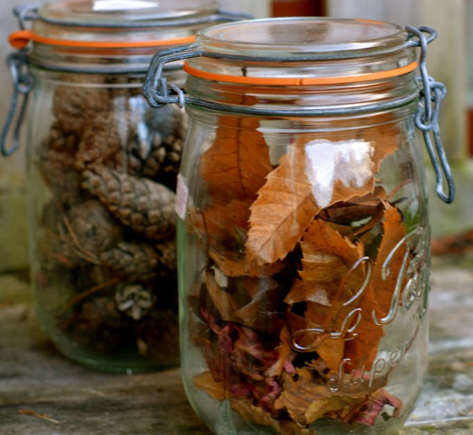 Autumn Estimating Jars Science Experiments For Kids