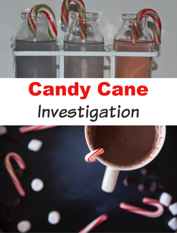 Candy Cane Experiment - easy candy cane experiment for kids #candycanescience #candycaneactivities