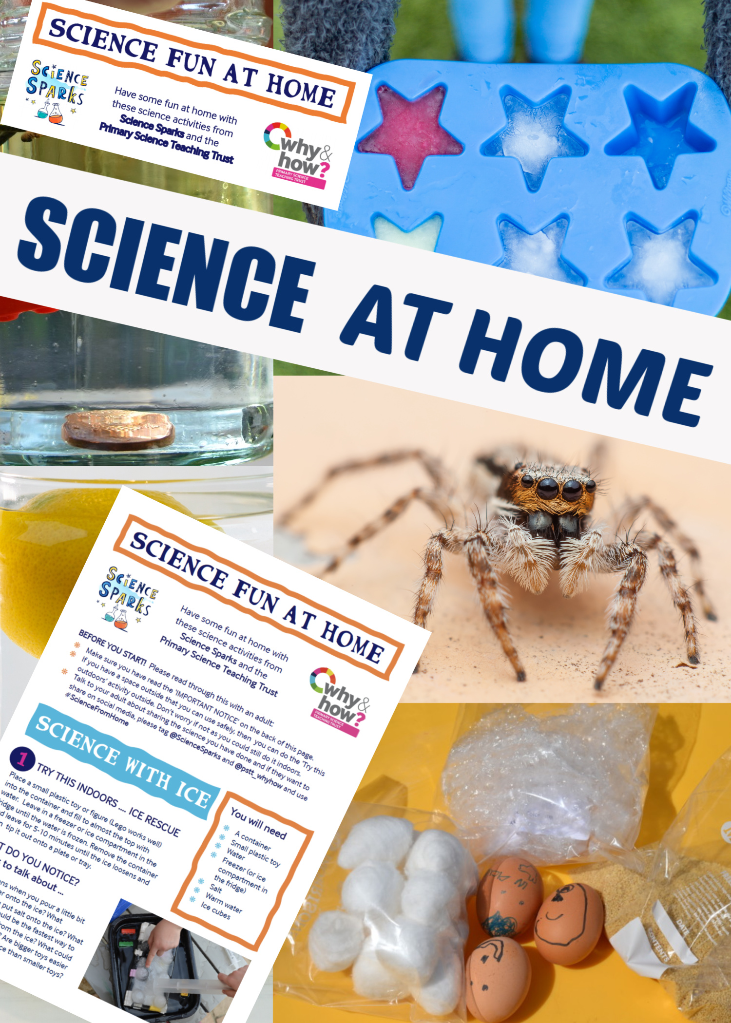 science experiment sheets for science home