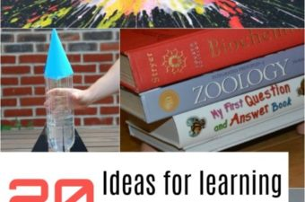 20 ideas for learning about forces