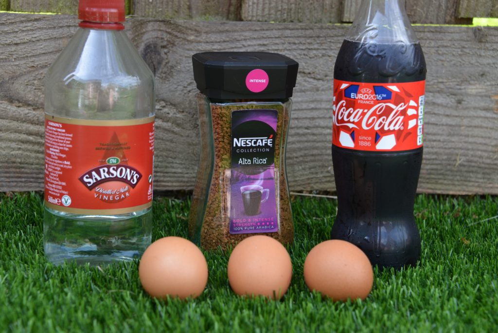eggs , vinegar, coffee and coco cola for a tooth decay experiment