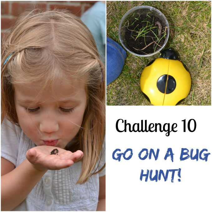 bug hunt science challenge for kids