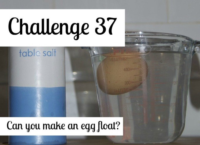Make an egg float using salt and water - easy kitchen science challenge for kids