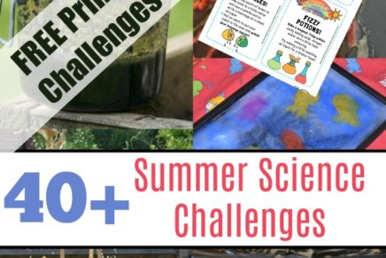Summer Science Challenges