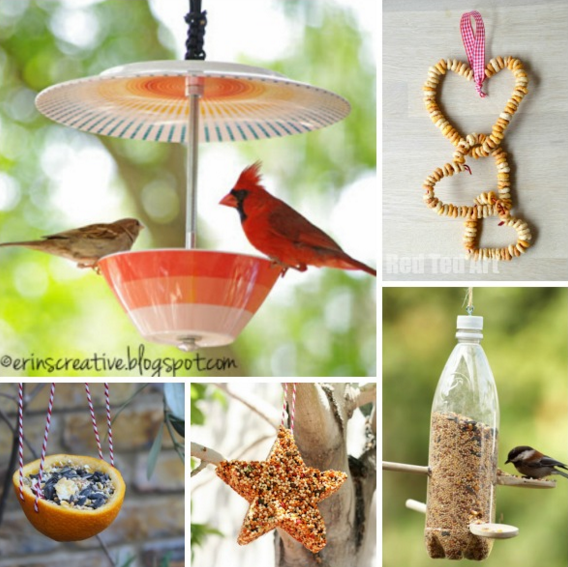 homemade birdfeeders