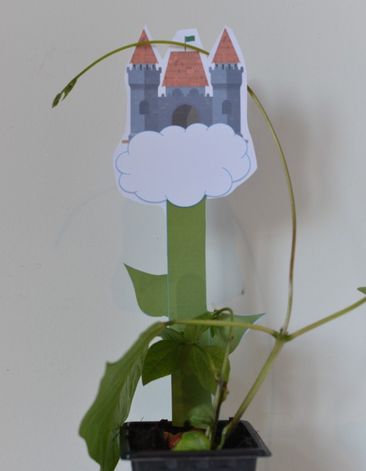 Jack and the beanstalk printable - grow a bean for Jack!
