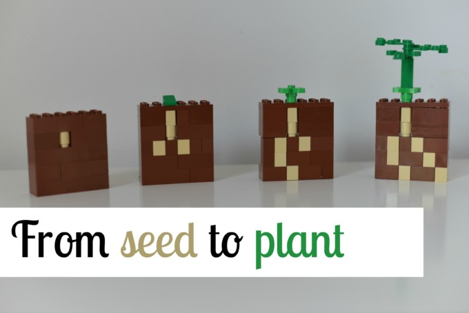 seed to plant with LEGO