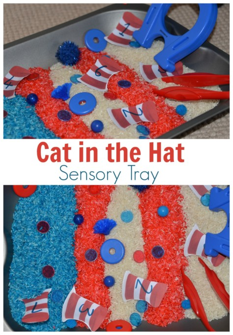 Cat in the hat sensory tray