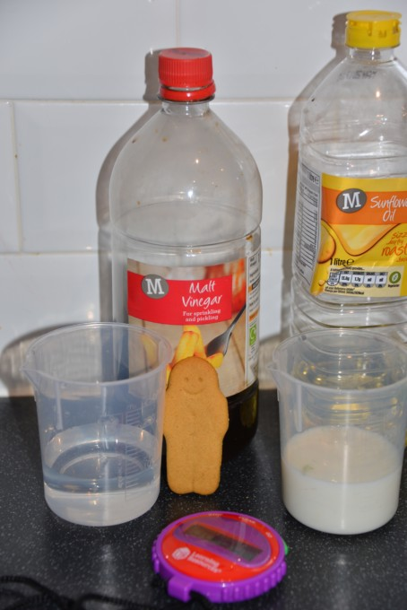Gingerbread Man Experiment - Science for Kids