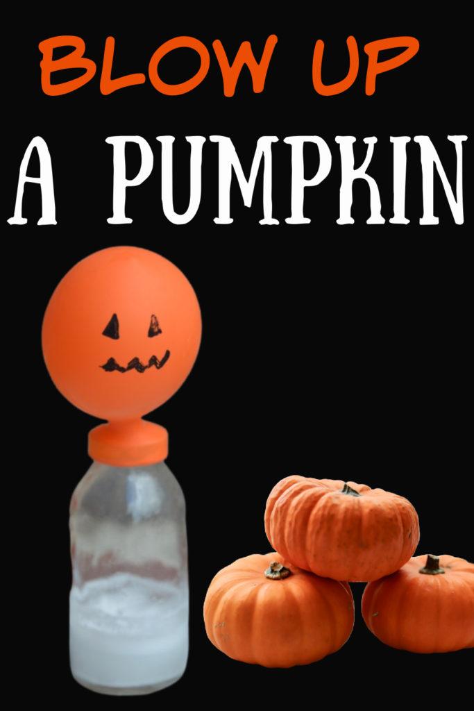 Blow up a pumpkin balloon