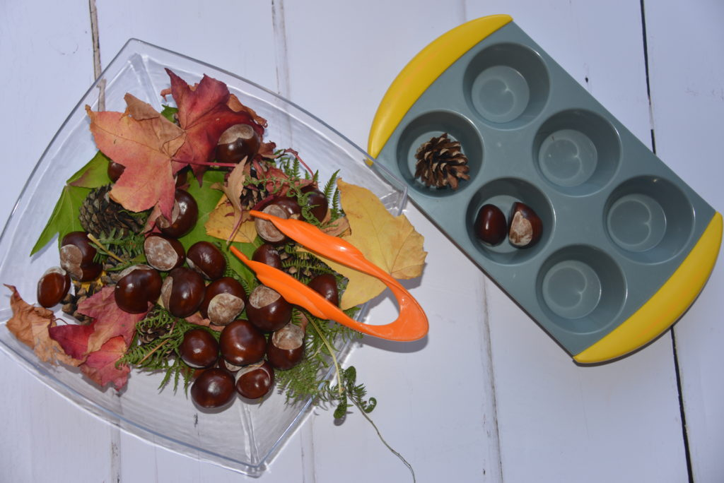autumn sorting tray with leaves, conkers, pine cones and tweezers
