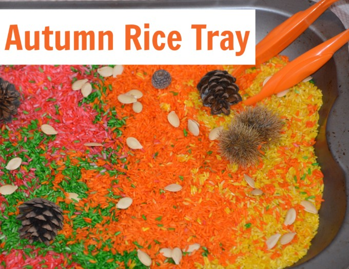 autumn rice tray