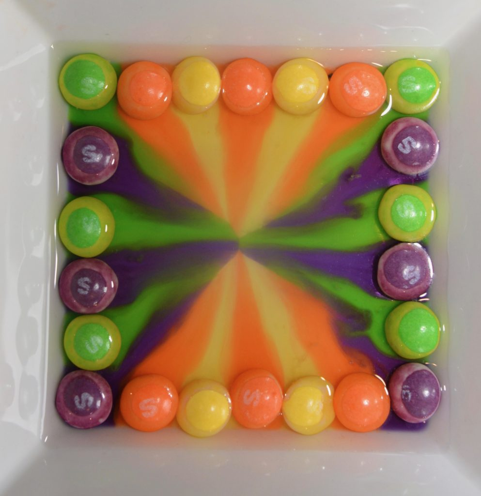 Skittles Experiment - colourful skittles display