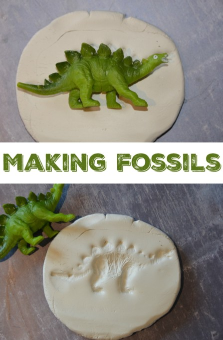 Charles Darwin and Making Fossils