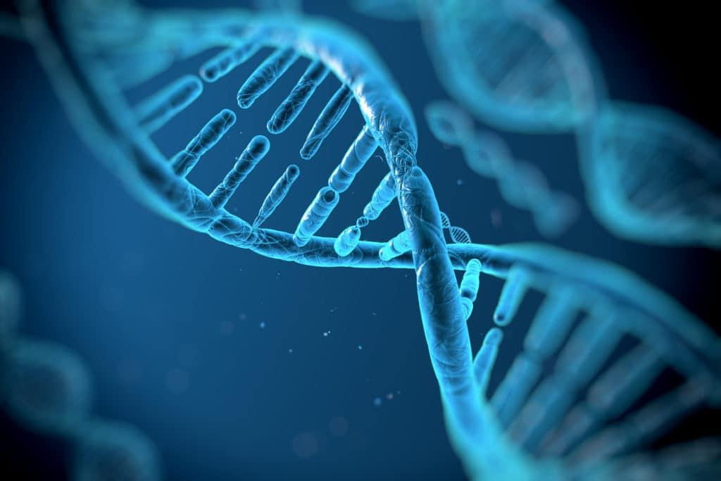 Human DNA Image