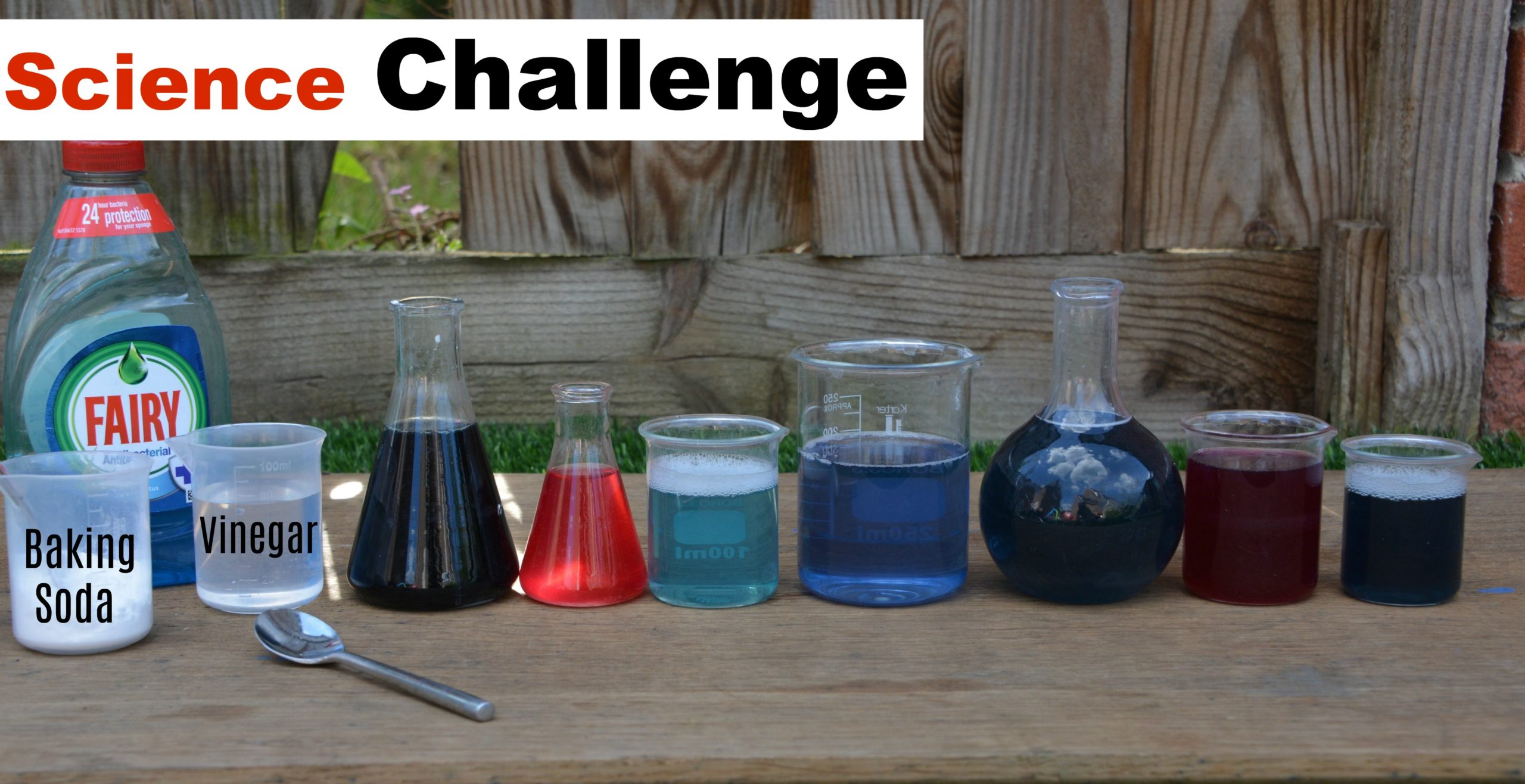 Science For Kids Red Cabbage Indicator Colour Changing
