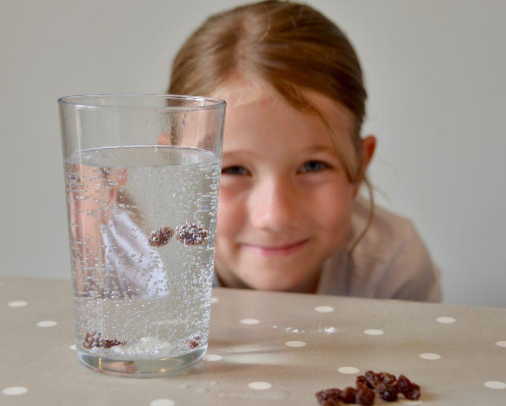 Raising Raisins - dancing raisins in a glass - kitchen science for kids