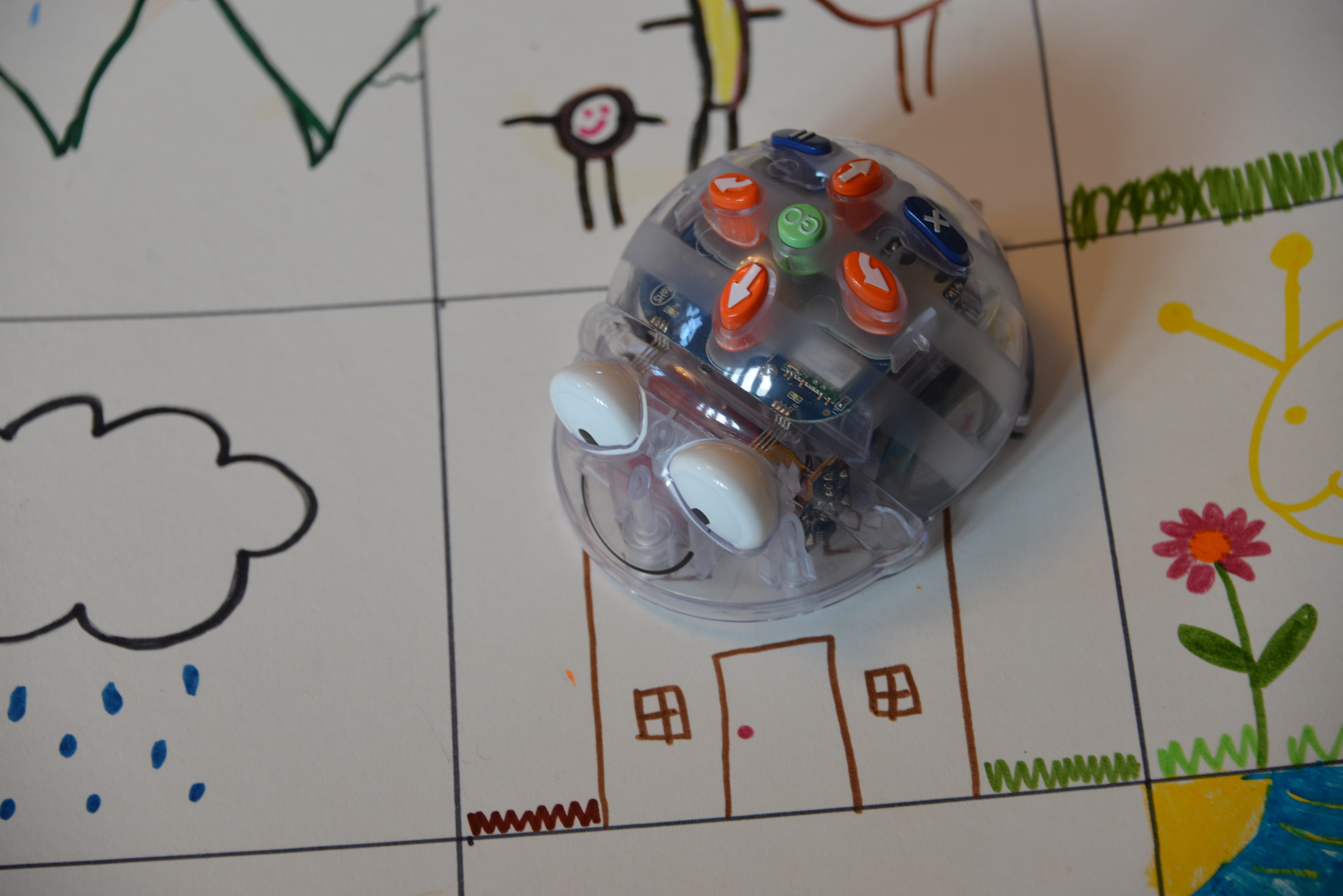 Make Your Own Bee Bot Map