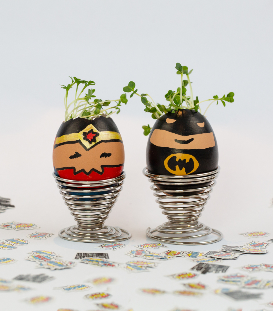 Superhero cress heads