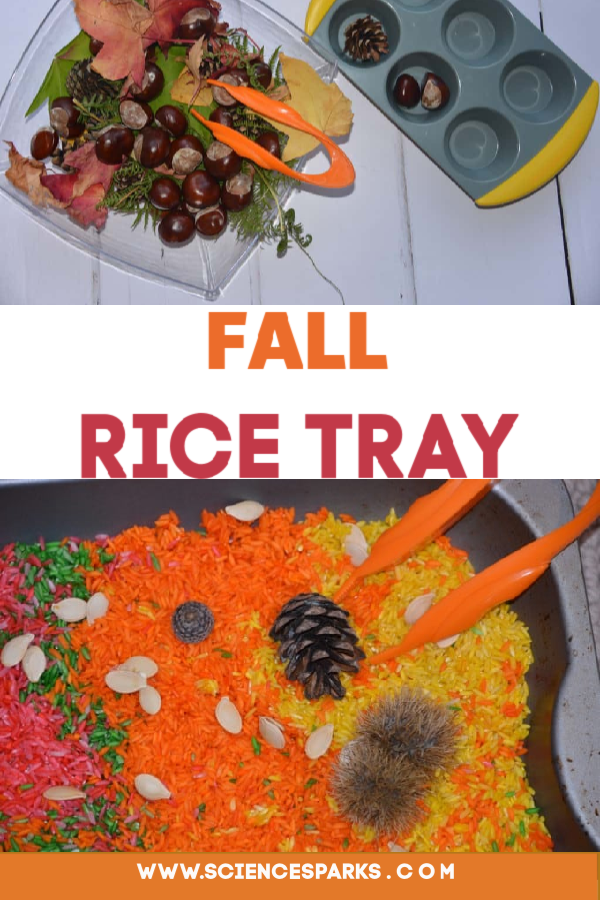 Fall Rice Tray - great seasonal fine motor skill activity #finemotorskills #fallactivities