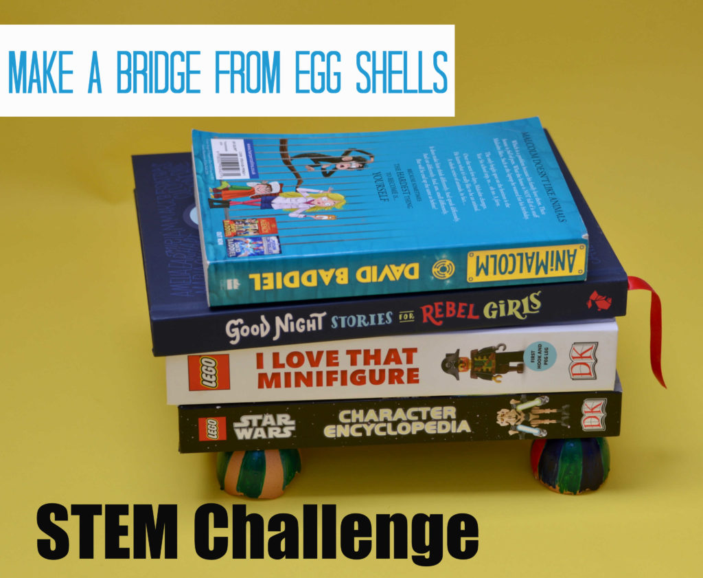 STEM Challenge - eggshell bridge